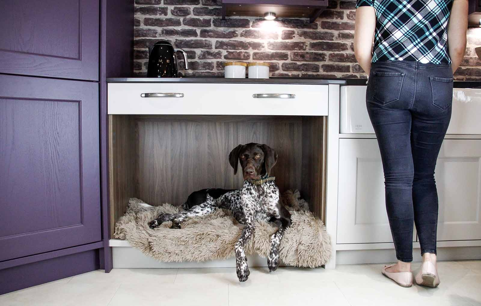 How to Make Pet Friendly Kitchens